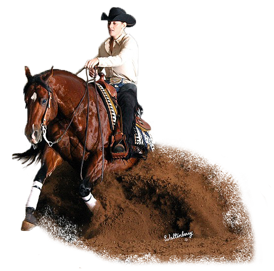 western horse png