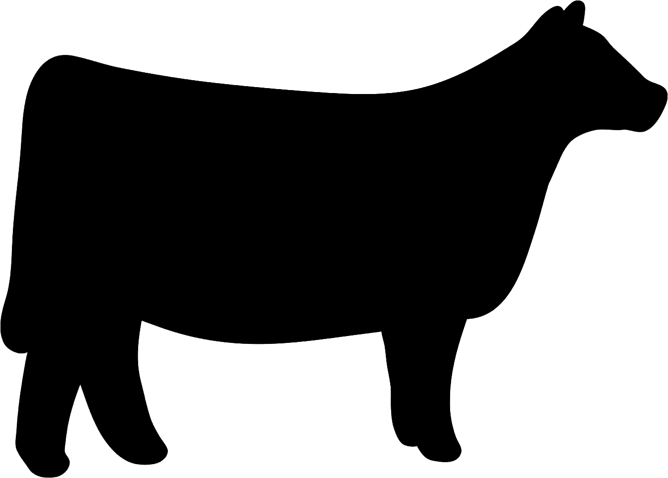 Western svg heifer. Cow clipart pictures pinterest