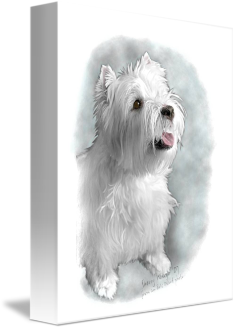Westie drawing pencil. Request by sherry wargo
