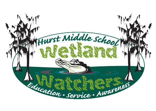 Wetland drawing middle school. Gator aid alabama artist