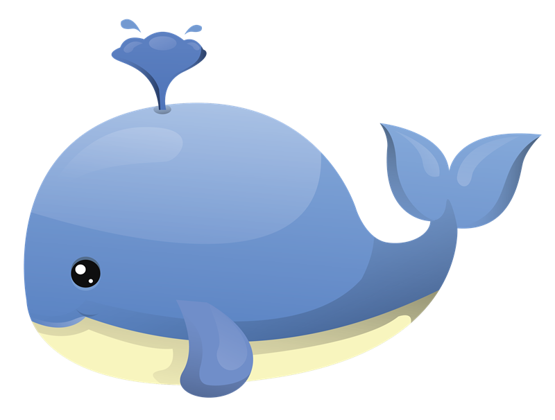 transparent whale catoon
