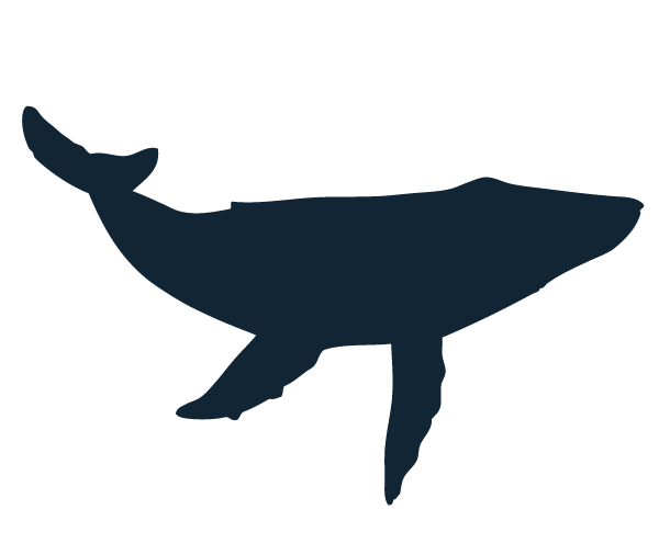 Blue Whale Silhouette at GetDrawings