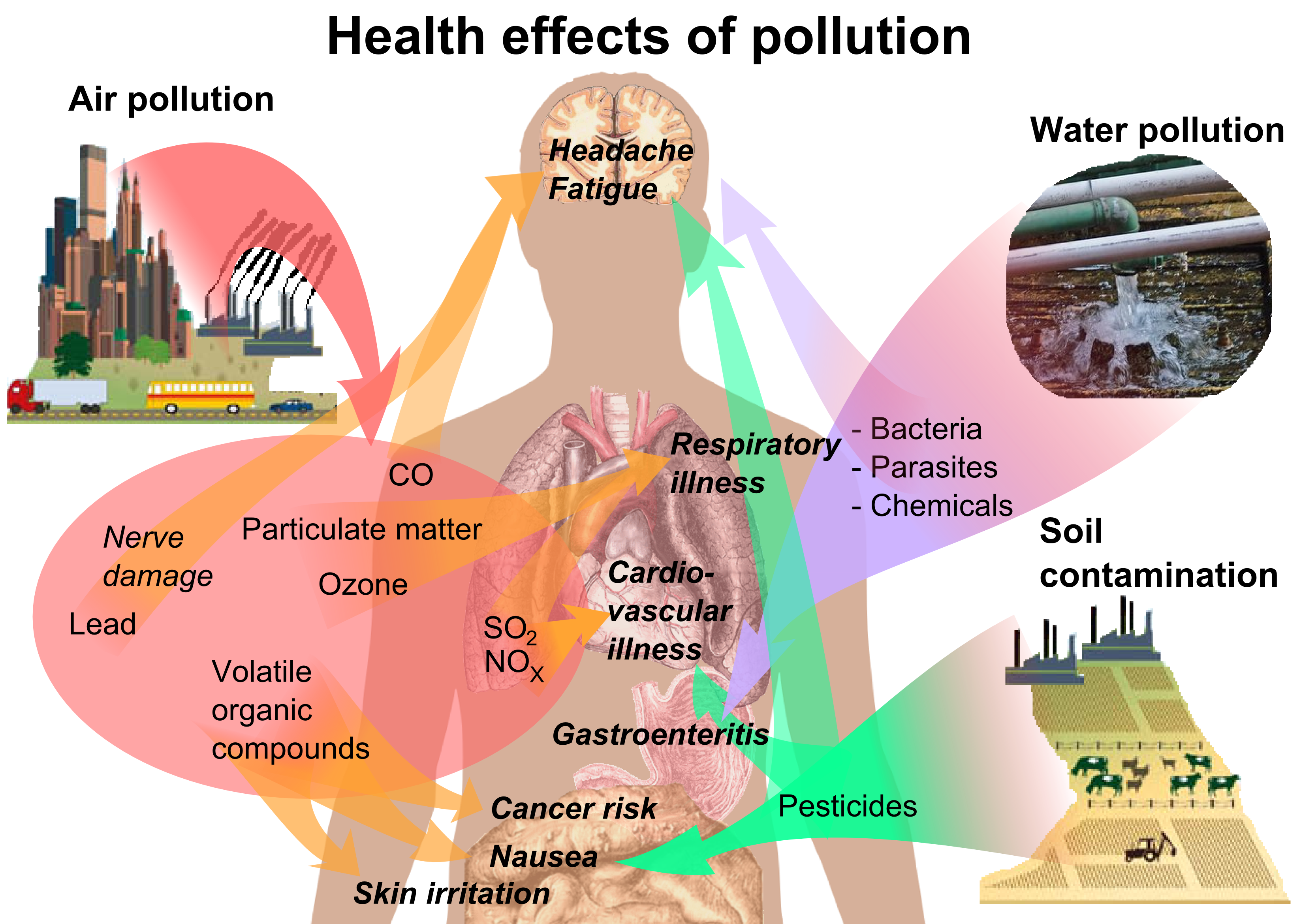 File health effects of. Pollution clipart drawing graphic library library