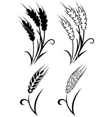 Wheat clipart wheat stem. Gallery for stalk vector