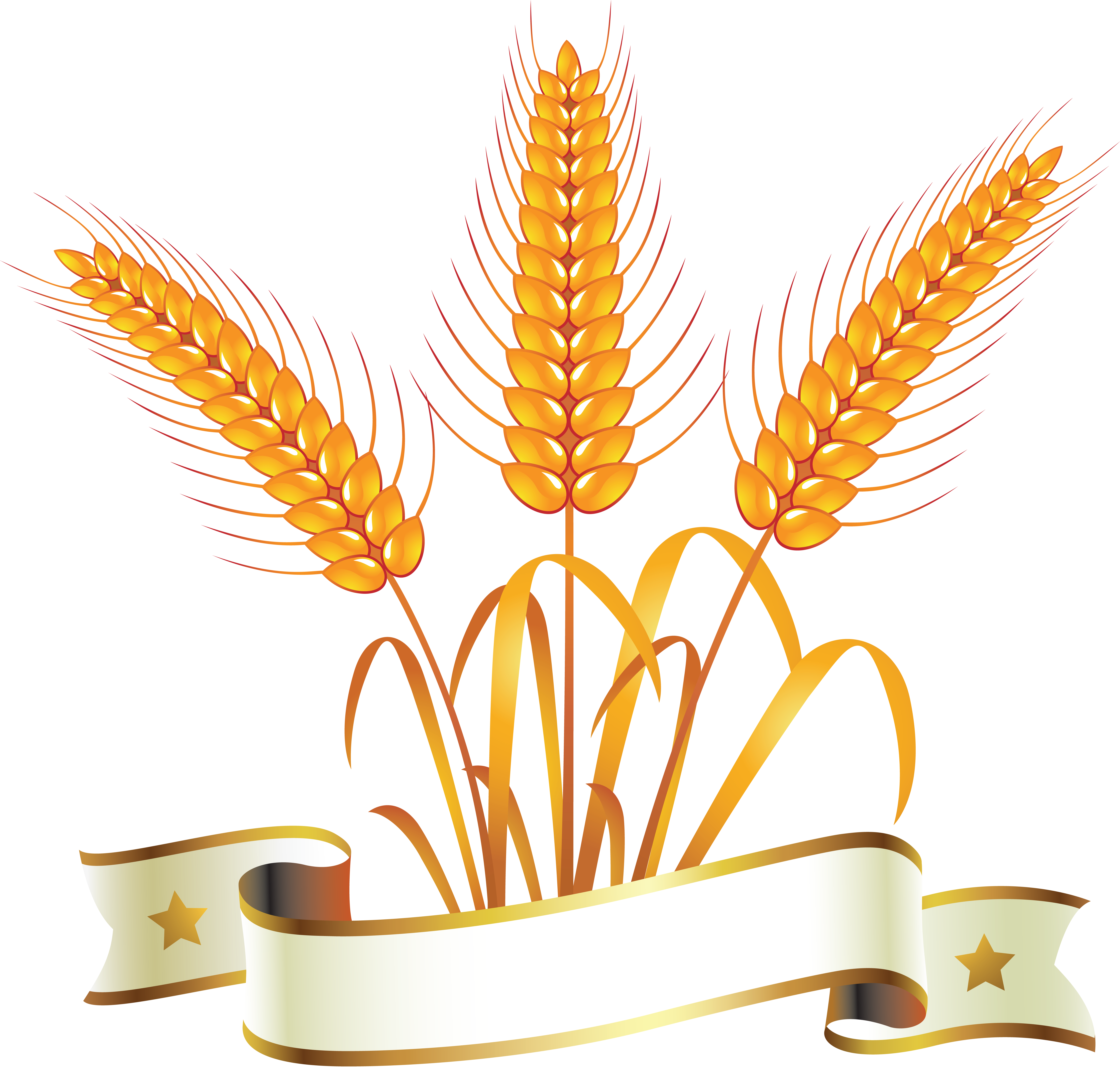 Cereal clipart wheat seed. Png images free download