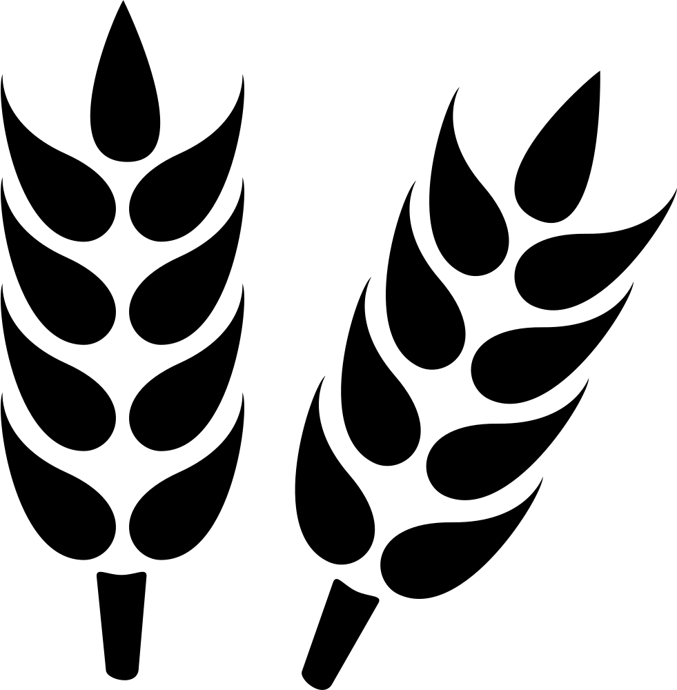 Wheat Svg Png Icon Free Download
