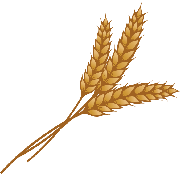 Wheat stalk png. Clipart at getdrawings com