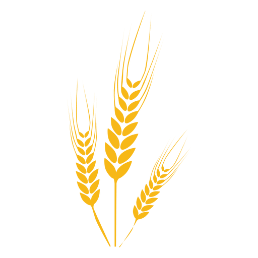 wheat vector png