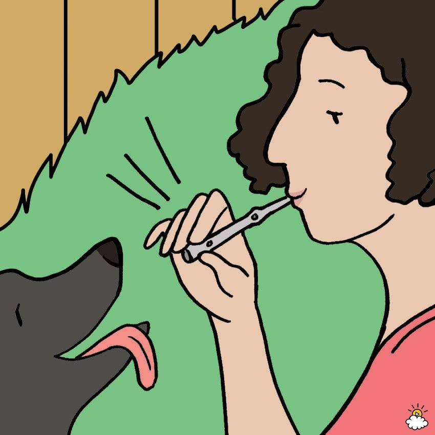 whistle clipart dog whistle