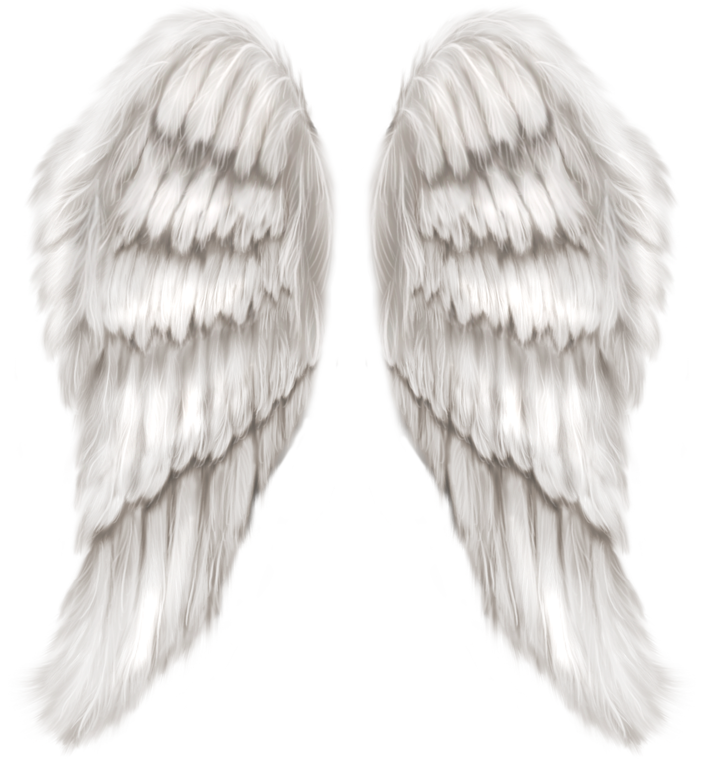 White angel wings png. Transparent clip art image