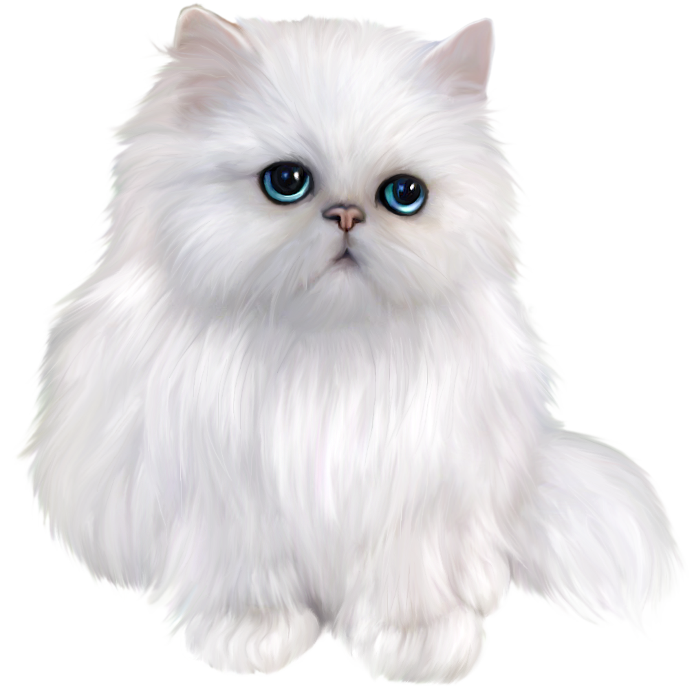 White cat png. Persian clipart gallery yopriceville