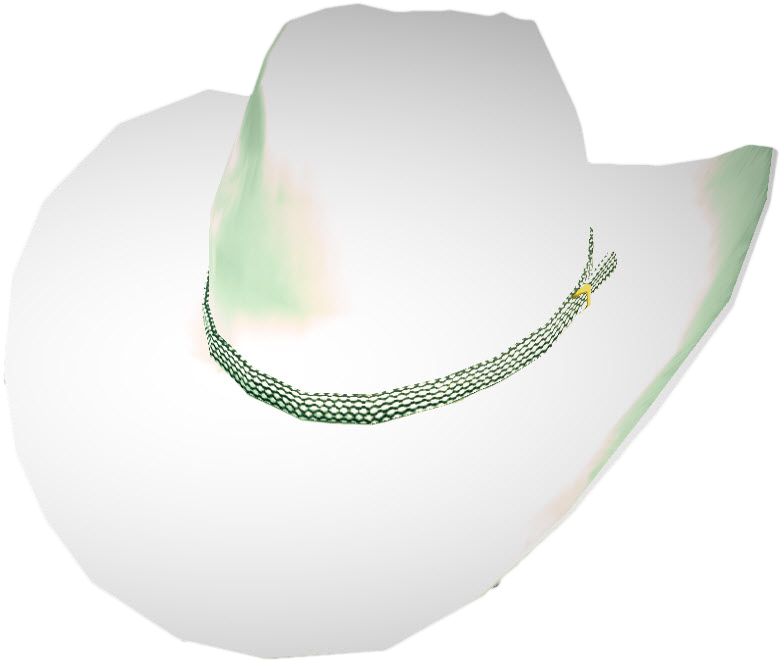 White cowboy hat png. Image dead rising wiki