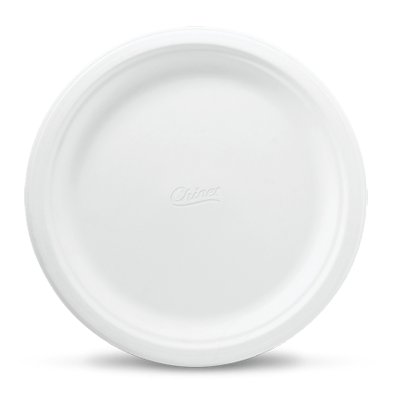 Disposable Paper Dinner Plates