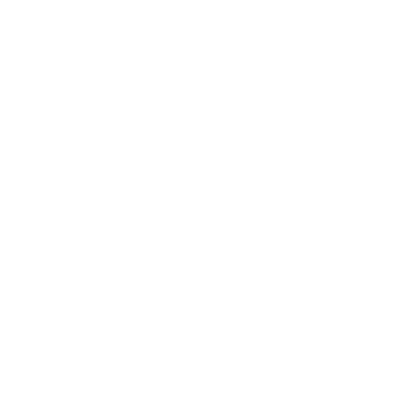 White doily png