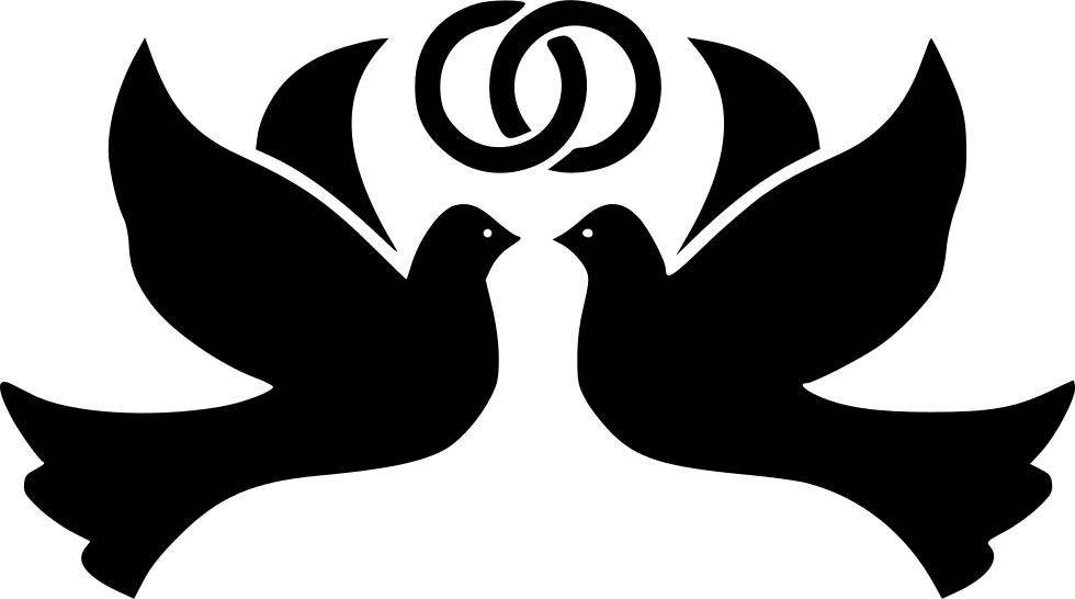 White doves with rings png. Bird birds dove flight