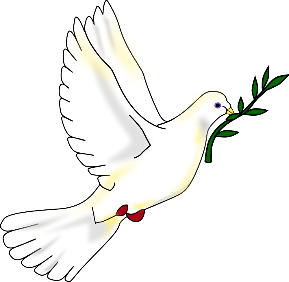 Vector doves svg. File peace dove wikimedia