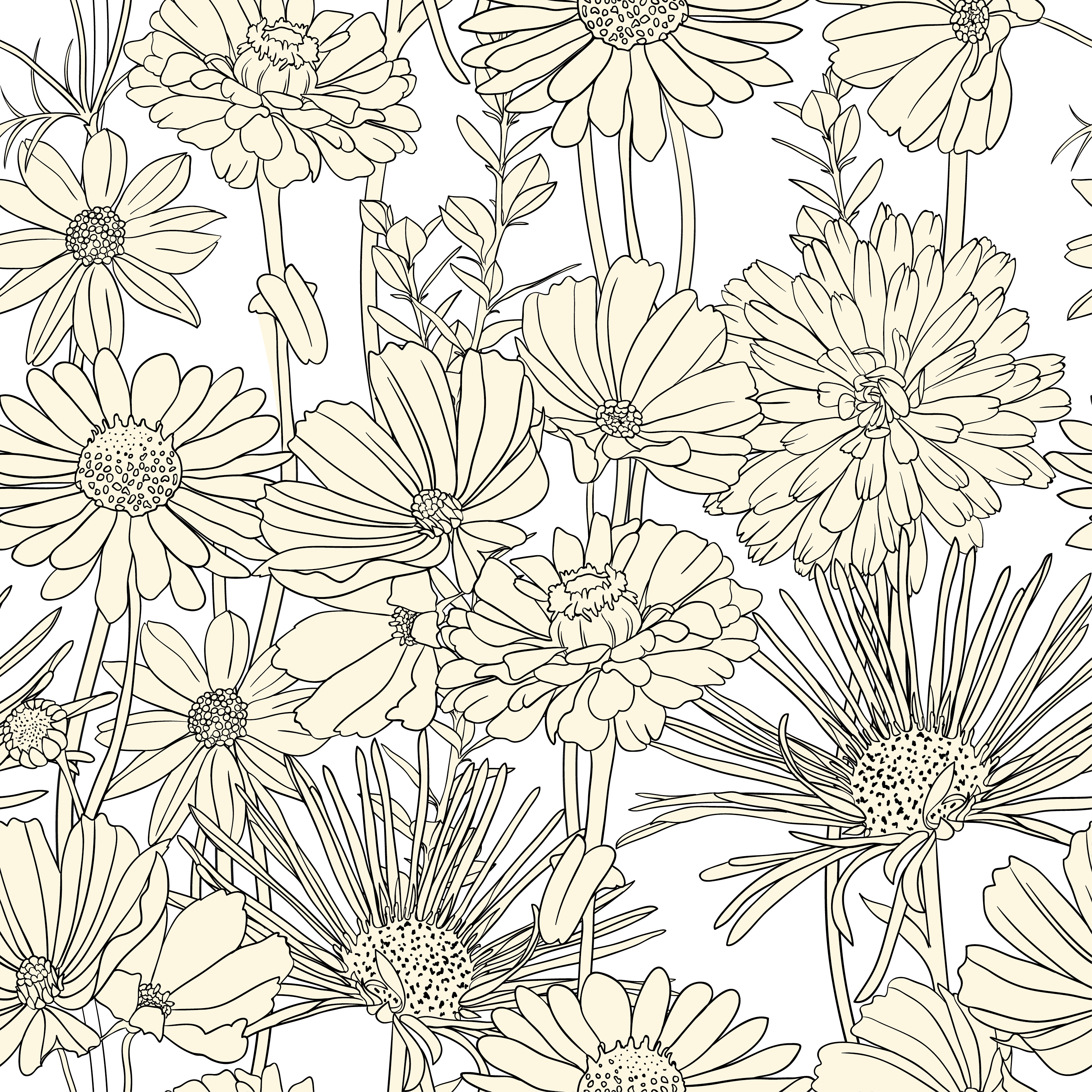 White drawing black background. Draw flowers pattern and