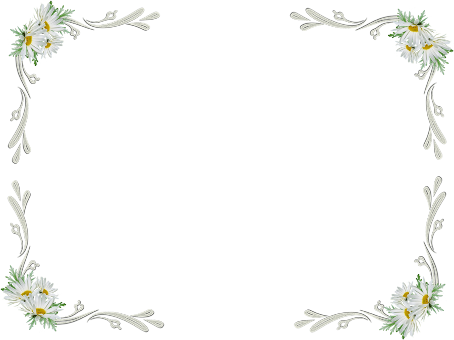 White Flower Border Transparent Png Clipart Free Download Ywd