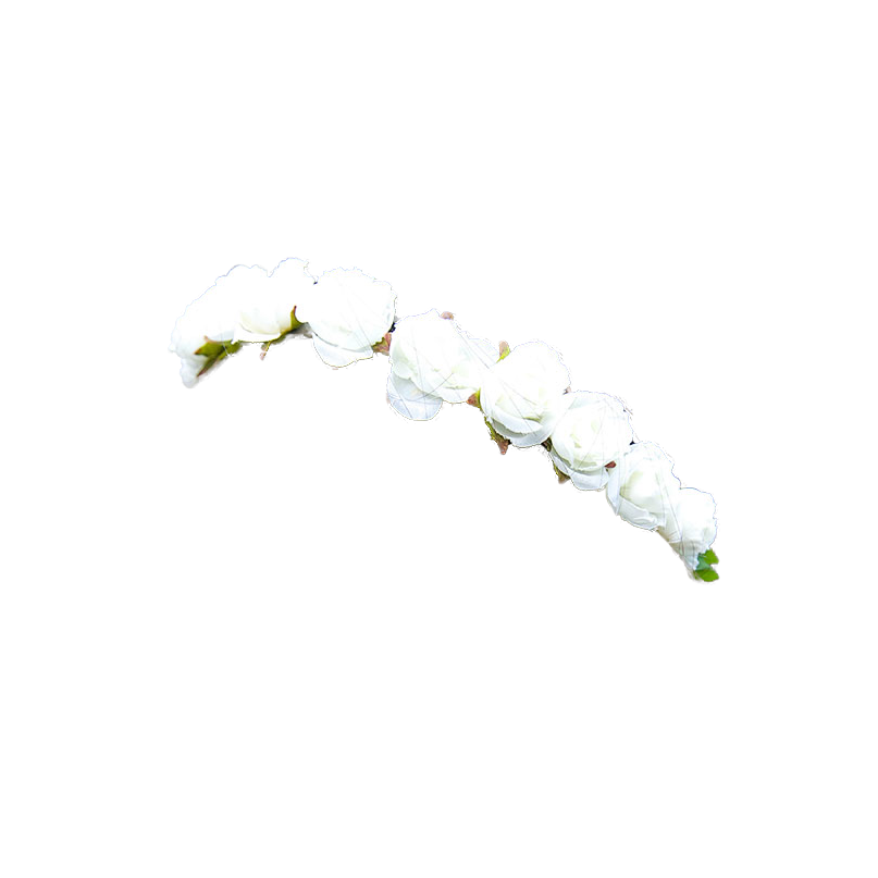 White flower crown png. Totally transparent mount whateverest