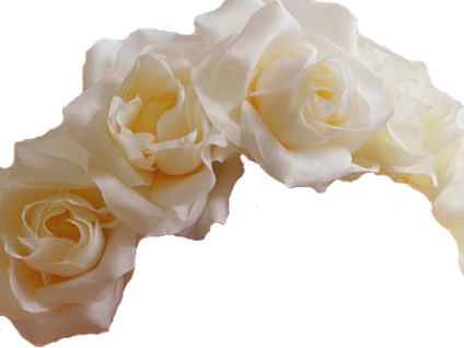 White flower crown png. Crowns photo