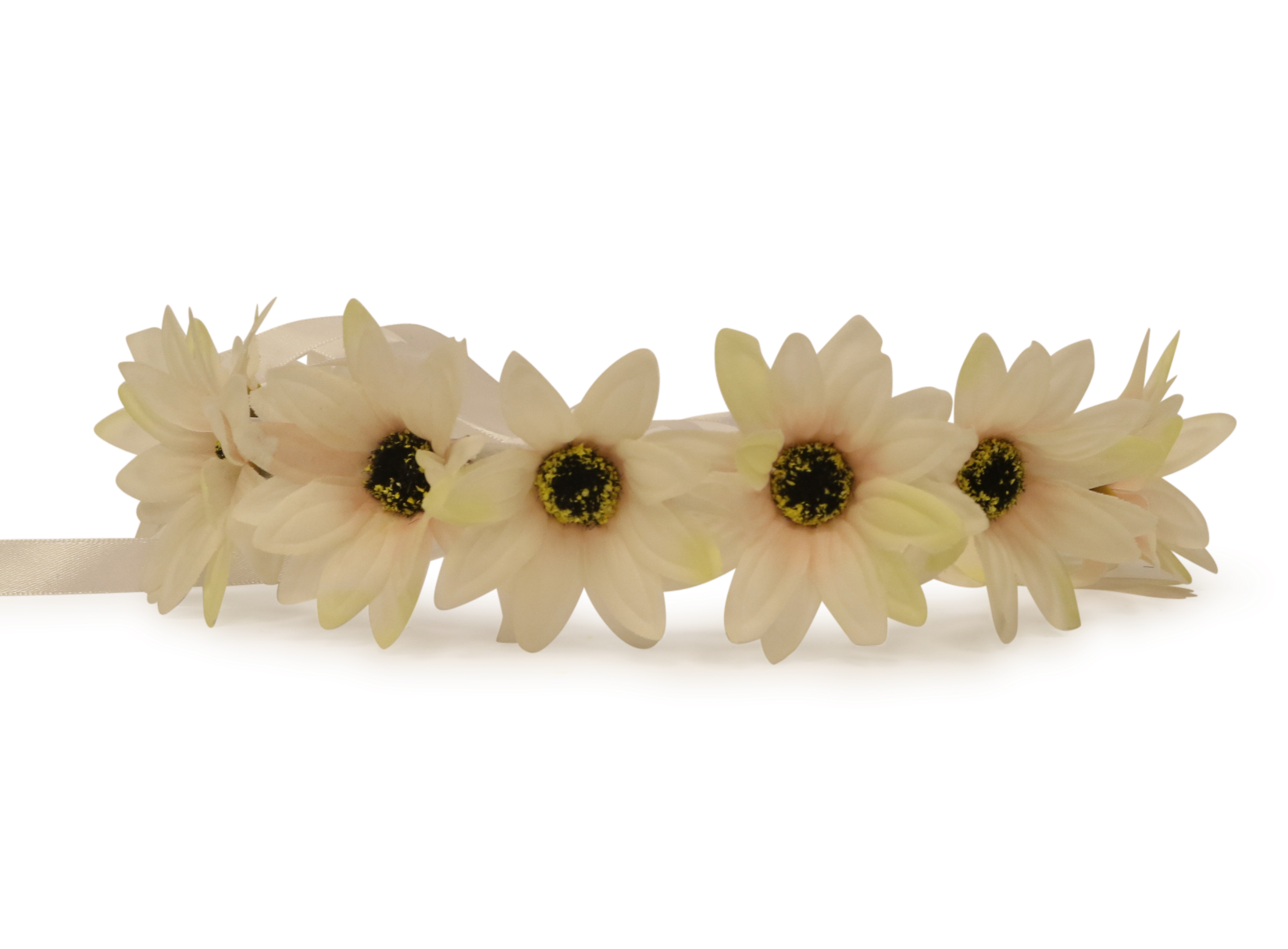 White flower crown png. Light up little lab