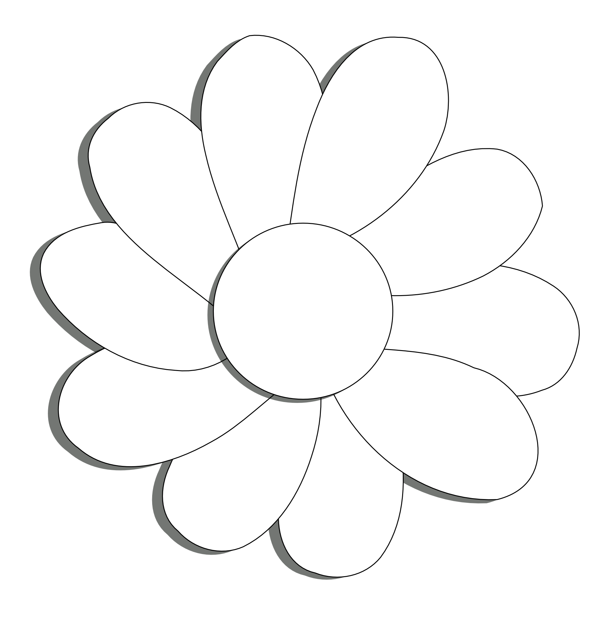 White drawing black background. Collection of flower