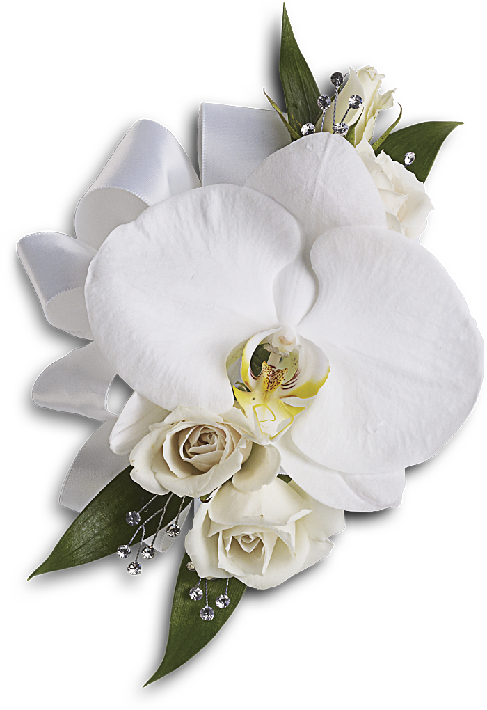 White wedding flowers png. Choosing tips and trends