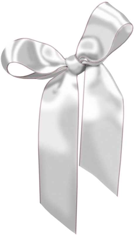 White gift bow png. Ribbon silver shoelace knot