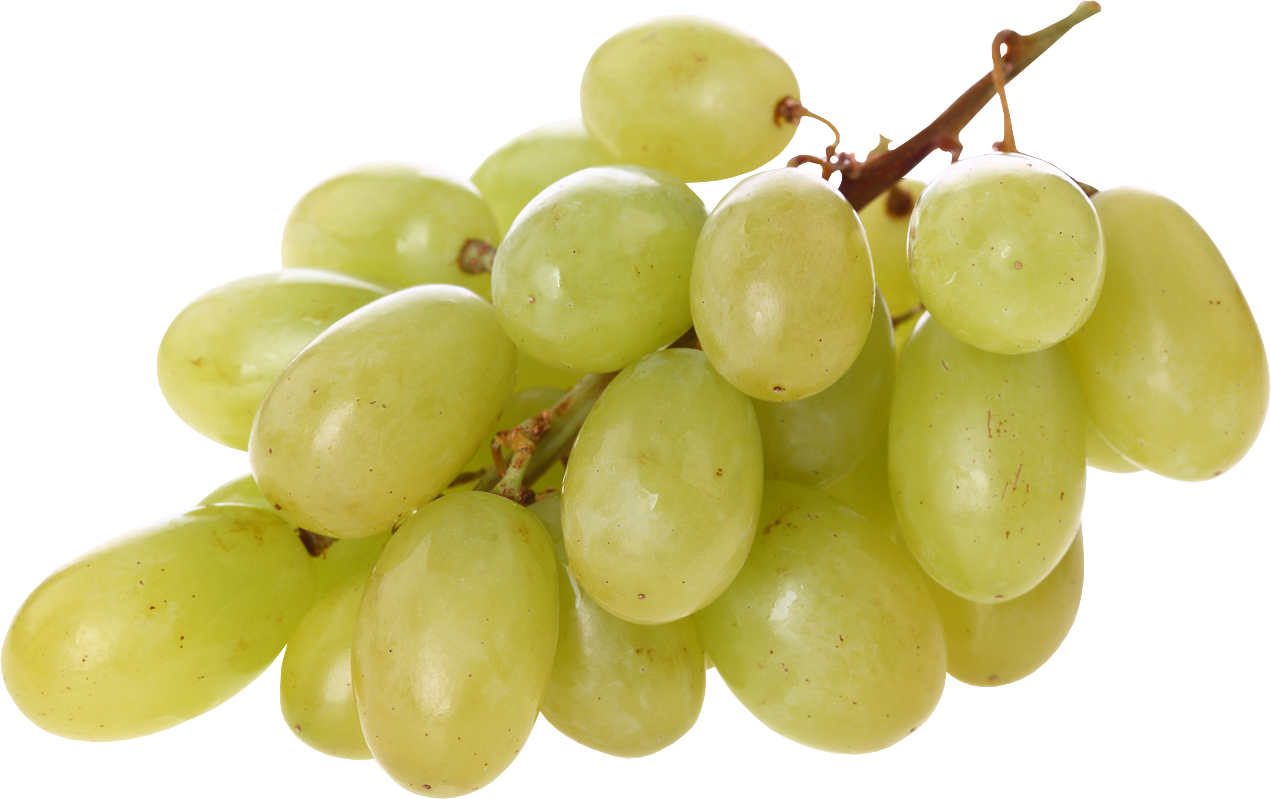 Grape transparent green. Png image free picture