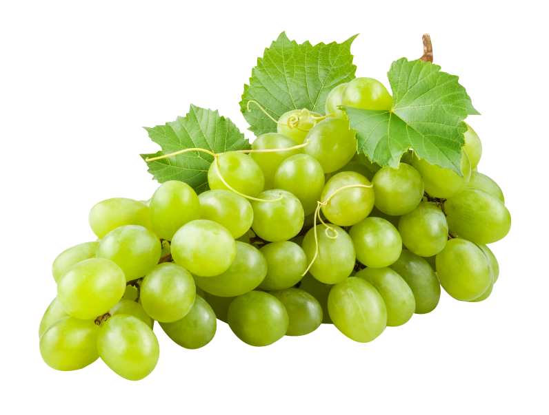 Grape transparent green. Grapes hd png images