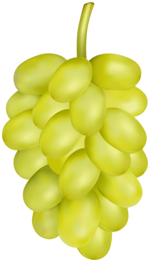 Grape transparent white. Png free images toppng