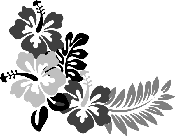 White hibiscus flower png. Hawaiian stencils grey clip