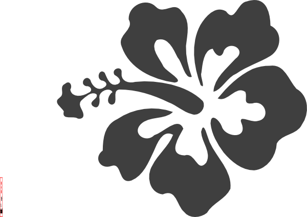 White hibiscus flower png. Clip art at clker