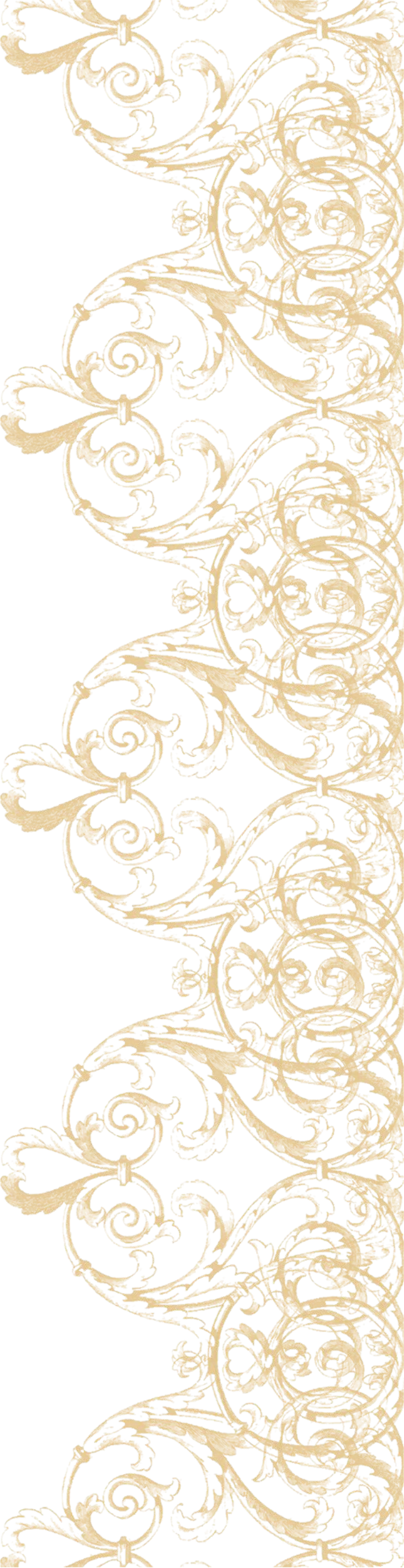 Vector laces vintage lace. White clip art free