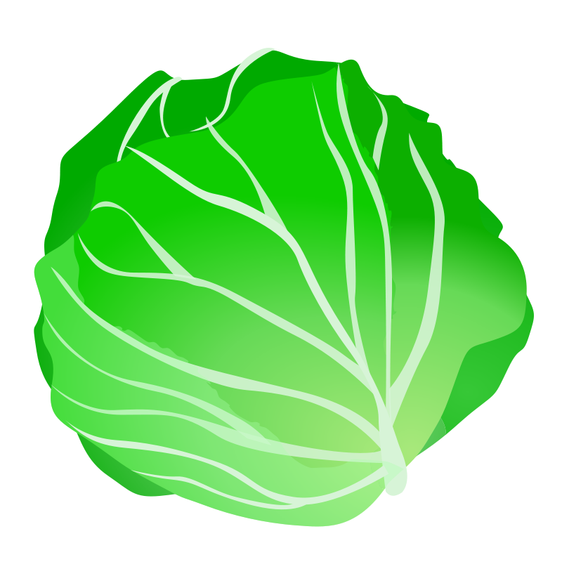 White ornamental cabbage png. Clipart recipes vegetables fruit