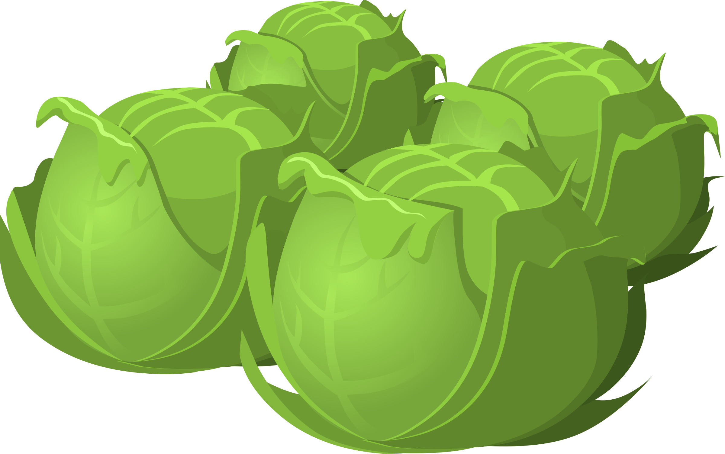 Vector vegetables veggy. Food cabbage icons png
