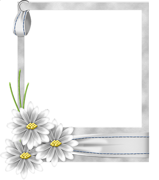 White photo frame png. Flower transparent vector clipart