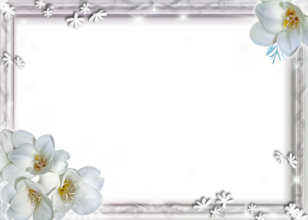 White photo frame png. Flower file vector clipart