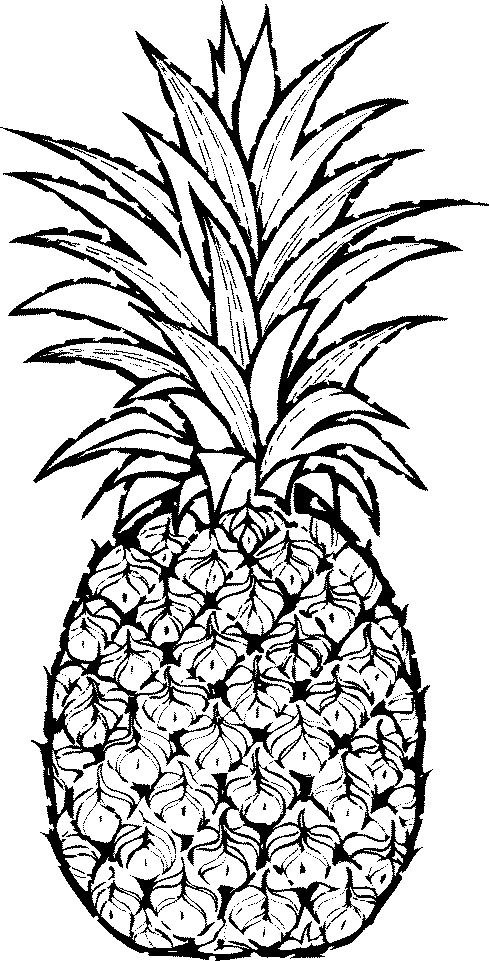 White pineapple. Free cliparts download clip