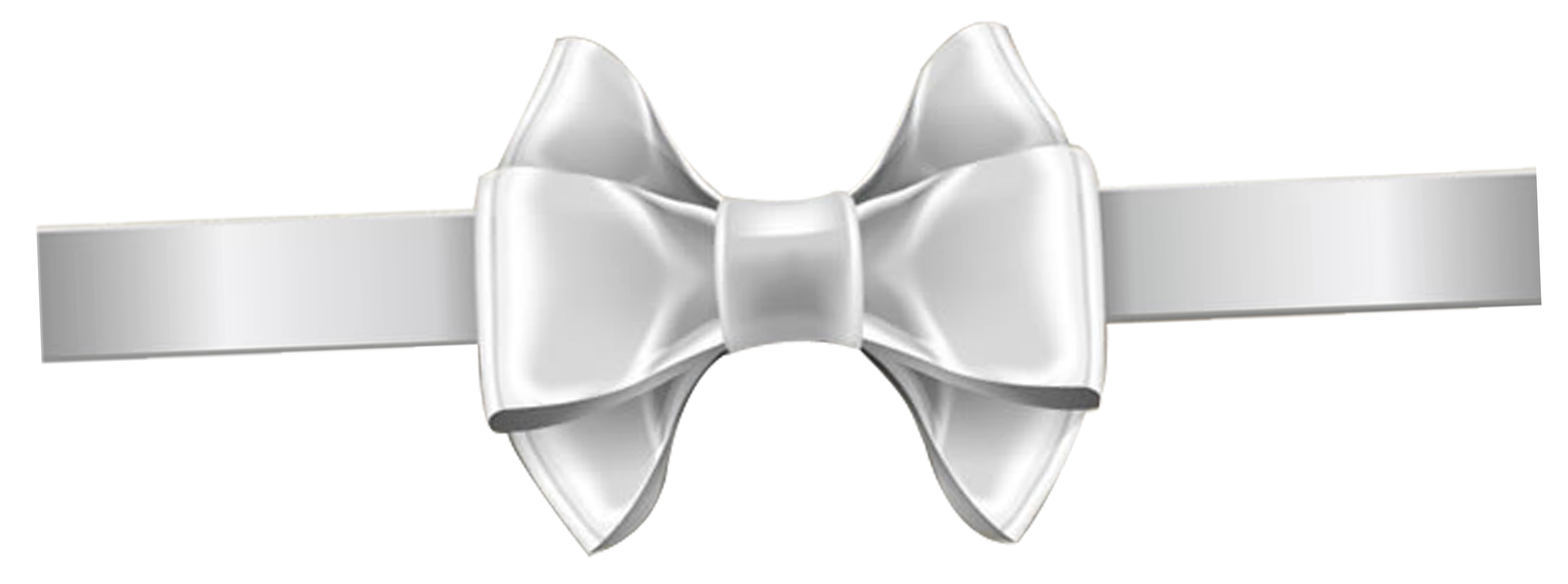 White ribbon bow png. Shoelace knot transprent free