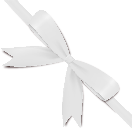White Bow Ribbon Icon