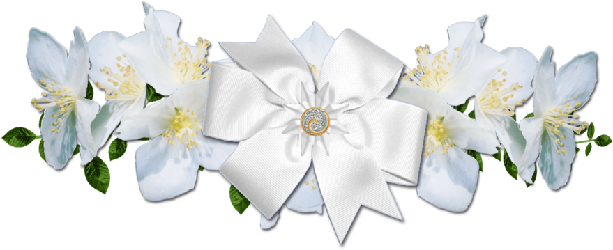 White rose border png. Download picture royalty free