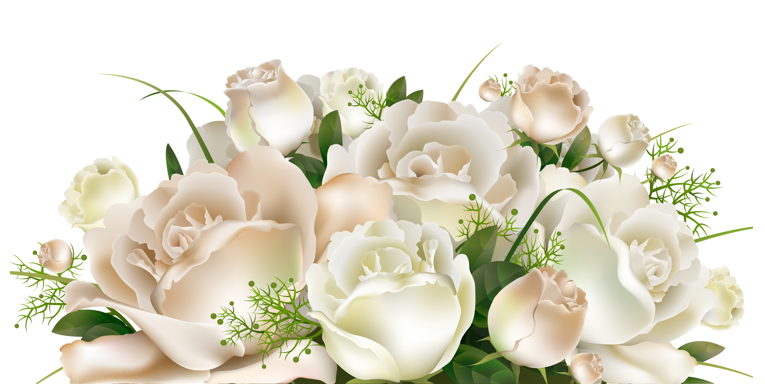 White rose border png. Roses decoration clipart picture