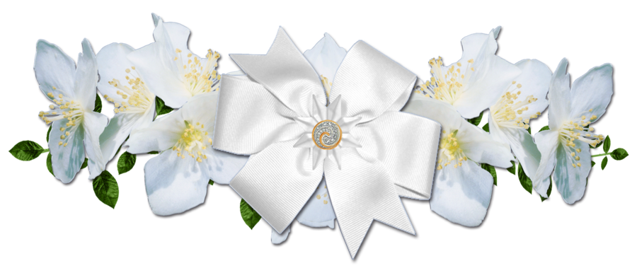 White rose border png. Roses and bow by
