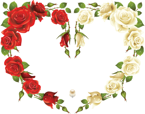White rose border png. Large transparent heart frame