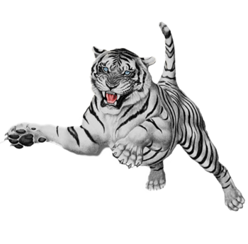 white tiger png #93109720