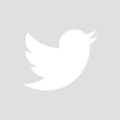 White twitter logo png. Leadership lessons of the