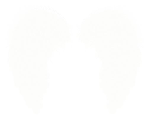 Wings PNG images free download