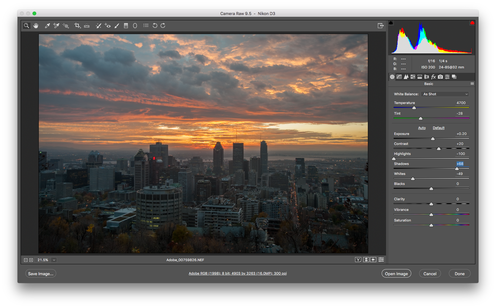 Why can't i save my photoshop file as a png. Camera raw now available