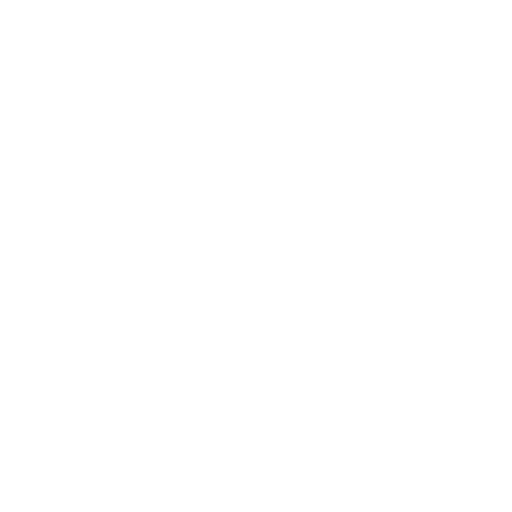 White wifi icon